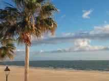 Tropische stranden in rota stock foto's