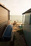Tropische Strandhütte stockfoto
