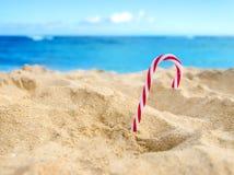 Tropische strandkerstmis en Nieuwjaarachtergrond Stock Afbeelding