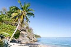 Tropische Strandlandschaft Stockbilder