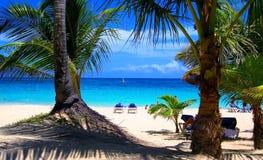 Tropische strandmening stock foto's
