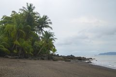 Tropische Strandmening in Corcovado royalty-vrije stock fotografie