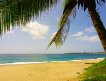 Tropische strandtoevlucht Stock Afbeeldingen