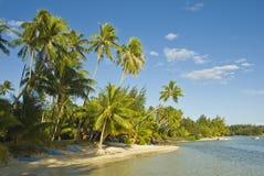 Tropische strandtoevlucht op moorea in zuidenoverzees Stock Afbeelding