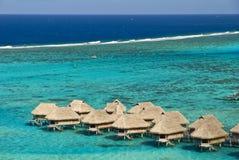Tropische strandtoevlucht op moorea in zuidenoverzees Stock Foto