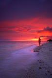 Tropische strandzonsondergang royalty-vrije stock fotografie