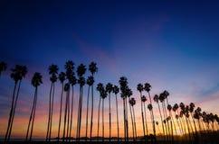 Tropische Strandzonsondergang met Palmen in Santa Barbara, Californ royalty-vrije stock fotografie