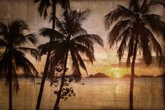 Tropische strandzonsondergang met palmen, uitstekend proces stock foto
