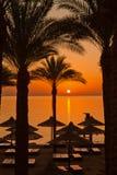 Tropische strandzonsopgang Royalty-vrije Stock Afbeeldingen