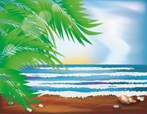 Tropische Tapete des Sommers Lizenzfreies Stockbild