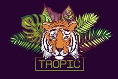 Tropische tekst Kaart met een tropisch ontwerp Het hoofd van een tijger op een achtergrond van bladeren van tropische bomen: Mons vector illustratie