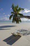 Tropische toevlucht Royalty-vrije Stock Afbeelding
