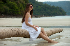 Tropische toevlucht Royalty-vrije Stock Afbeeldingen