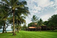 Tropische toevlucht met palm Stock Foto
