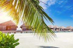 Tropische toevlucht op het Eiland van de Maldiven stock foto