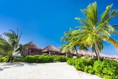 Tropische toevlucht op het strand op de Maldiven stock afbeelding