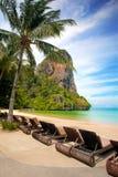 tropische toevluchtvakantie door het strand Stock Foto