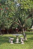 Tropische Tuin Royalty-vrije Stock Afbeeldingen