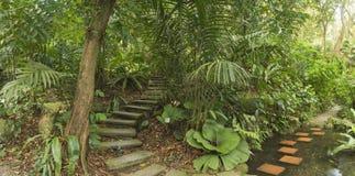 Tropische Tuin, Maleisië Royalty-vrije Stock Foto