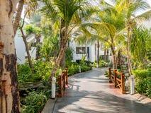 Tropische tuin van hotel in Doubai, Verenigde Arabische Emiraten Stock Foto