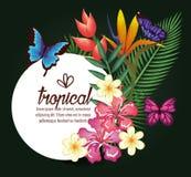 Tropische und exotics Blumen mit Schmetterlingen Lizenzfreies Stockfoto