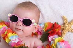Tropische Vakantie Royalty-vrije Stock Foto's