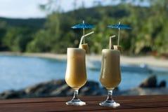 Tropische vakantiecocktails Stock Afbeelding