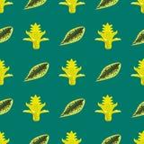Tropische van de het patroonwildernis van de bladerenzomer groene exotische naadloze van de het palmbladaard van de installatie b Royalty-vrije Stock Fotografie