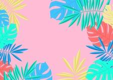 Tropische van de zomerpalm en monstera bladerengrens op roze backgrou stock illustratie