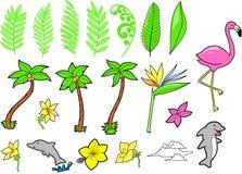 Tropische Vastgestelde Vector   Royalty-vrije Stock Fotografie