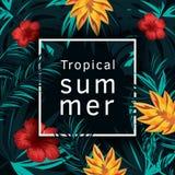 Tropische vectoraffiche met tropische bladeren en bloemen Royalty-vrije Stock Afbeelding
