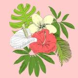 Tropische Vektorillustration Lizenzfreie Stockfotos