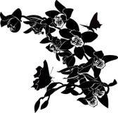 Tropische vlinders en orchideeën Royalty-vrije Stock Fotografie