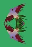 Tropische vogelpapegaai weerspiegelde verdubbeling royalty-vrije illustratie