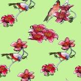 Tropische vogels als achtergrond en tropische bloemen watercolor Stock Fotografie