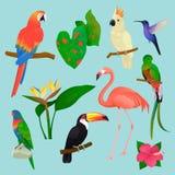 Tropische vogels vectorflamingo en exotische papegaai of kolibrie met de reeks van de palmbladenillustratie van maniervogeltje royalty-vrije illustratie