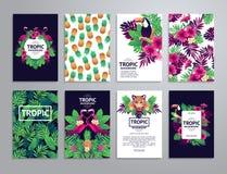 Tropische voor het drukken geschikte reeks Stock Fotografie