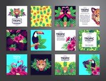 Tropische voor het drukken geschikte reeks Stock Foto's
