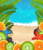 Tropische vruchten op overzeese achtergrond Stock Afbeeldingen