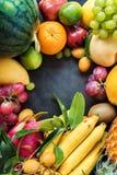Tropische Vruchten Ruwe het Eten Dark van het Conceptenvoedsel stock foto's