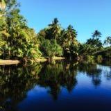 Tropische Waterbezinningen Royalty-vrije Stock Fotografie