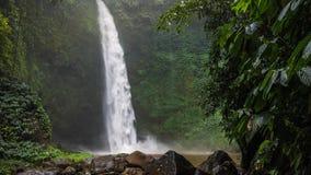 Tropische waterval in weelderige groene wildernis Dalend water die waterspiegel raken Groene die bladeren door de windwind worden stock video