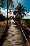 Tropische weg Stock Afbeeldingen