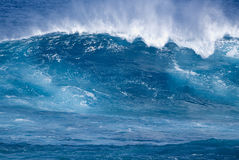 Tropische Welle Lizenzfreie Stockfotos