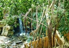 Tropische wildernis met rivier royalty-vrije stock foto