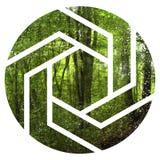 Tropische wildernisillustratie met geometrisch cijfer royalty-vrije stock fotografie