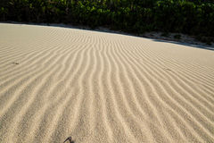 Tropische Zandgolven Royalty-vrije Stock Fotografie
