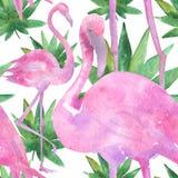 Tropische Zeichnung des Aquarells, rosafarbener Vogel und GrünPalme, tropische grüne Beschaffenheit, exotische Blume Lizenzfreies Stockbild