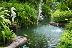 Tropische zentuin Royalty-vrije Stock Afbeelding