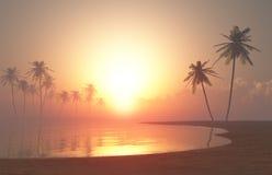 Tropische zonsondergang #2 Royalty-vrije Stock Foto's